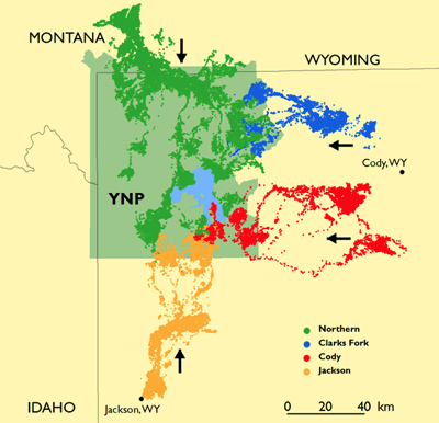 Elk Migration map