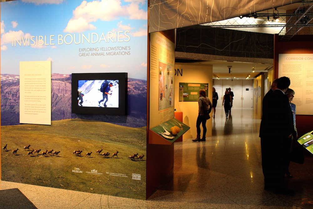 The entrance to the National Geographic exhibit INVISIBLE BOUNDARIES: EXPLORING YELLOWSTONE'S GREAT ANIMAL MIGRATIONS.