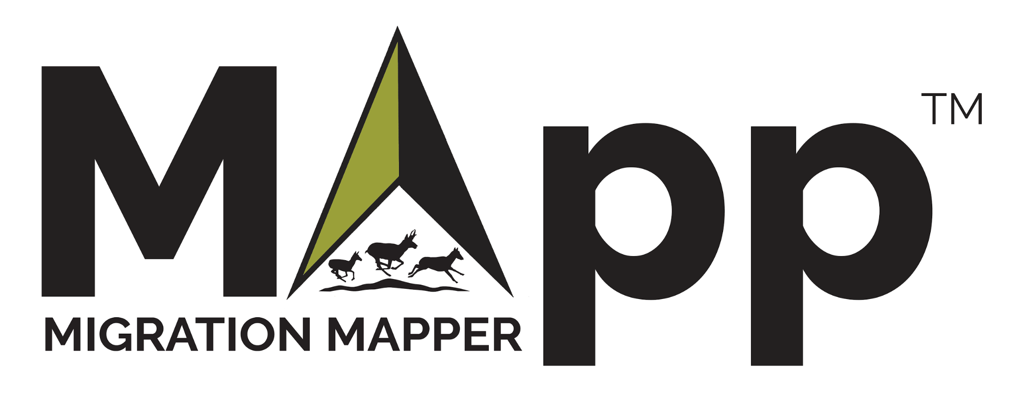 MigrationMapper_logo_whitebg.png