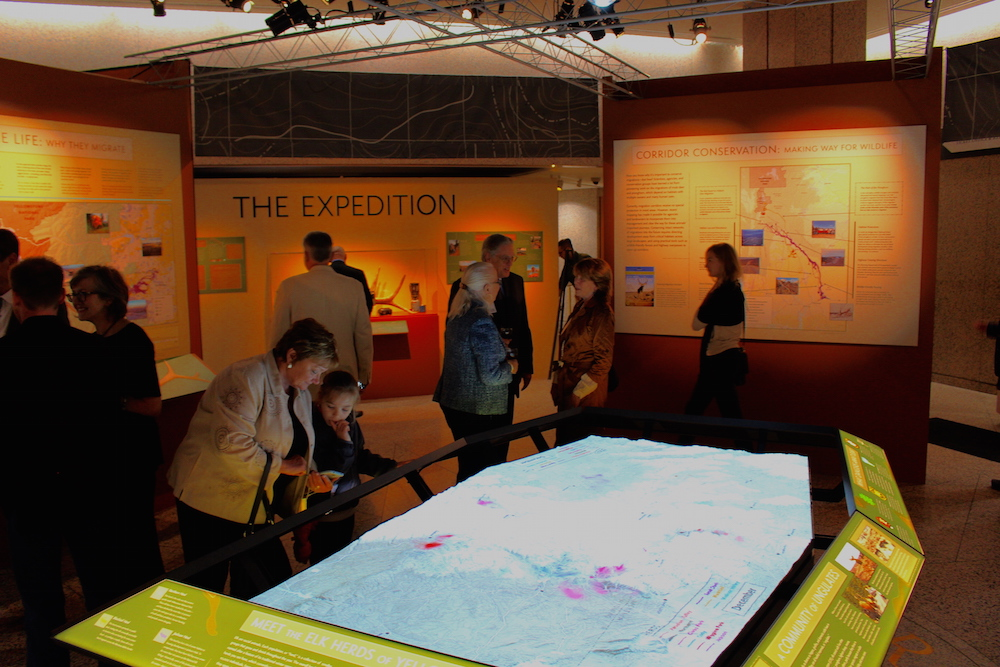 The core of the exhibit features an interactive, animated map of elk migration routes projected on a 3-D landscape of Greater Yellowstone Ecosystem.