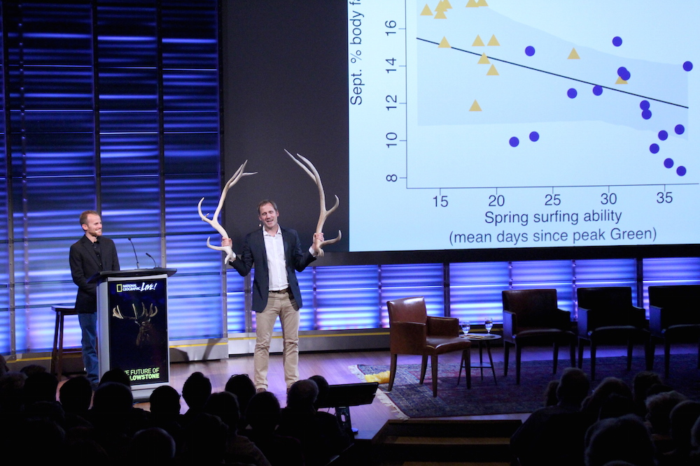 "WMI Research Associate Arthur Middleton shows a pair of elk antlers at a National Geographic Live! event on ""The Future of Yellowstone."" Middleton described how migration allows elk to access better forage at high elevations, which increases body fat and helps support physiological processes like growing antlers."