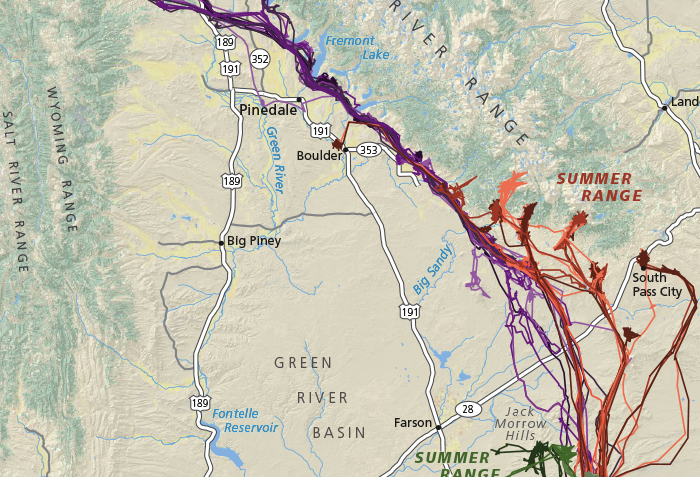 Map of mule deer migrations